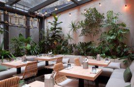 Thiết kế quán cafe nhà ống đẹp và sang trọng