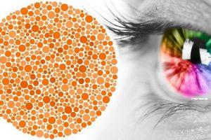 Bệnh mù màu và những điều bạn nên biết